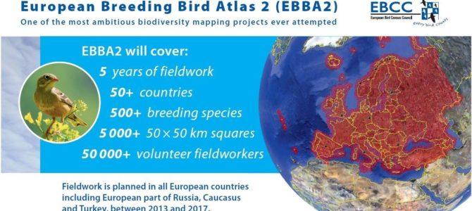 Contribuția Moldovei la al 2-lea Atlas European al Păsărilor Cuibăritoare (EBBA2)