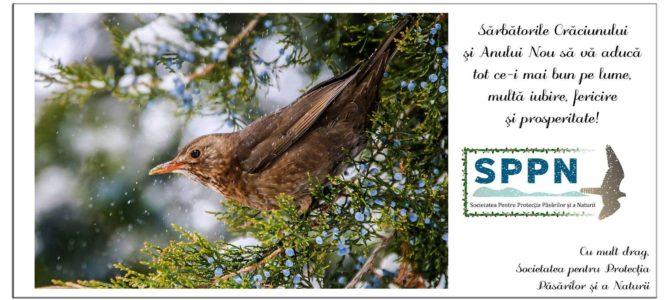 Societatea Pentru Protecția Păsărilor și a Naturii vă urează un Crăciun Fericit și un An Nou plin de realizări!