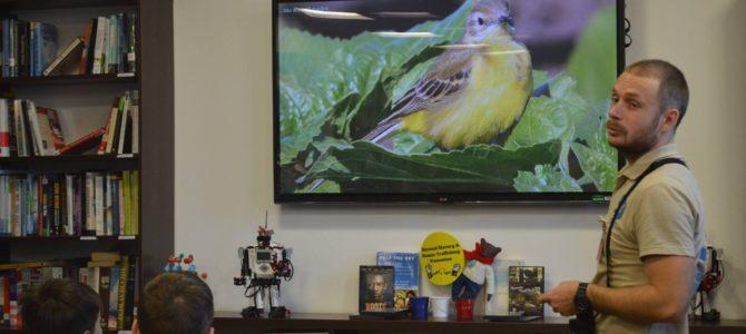 """Help a bird!"" la American Resource Center"