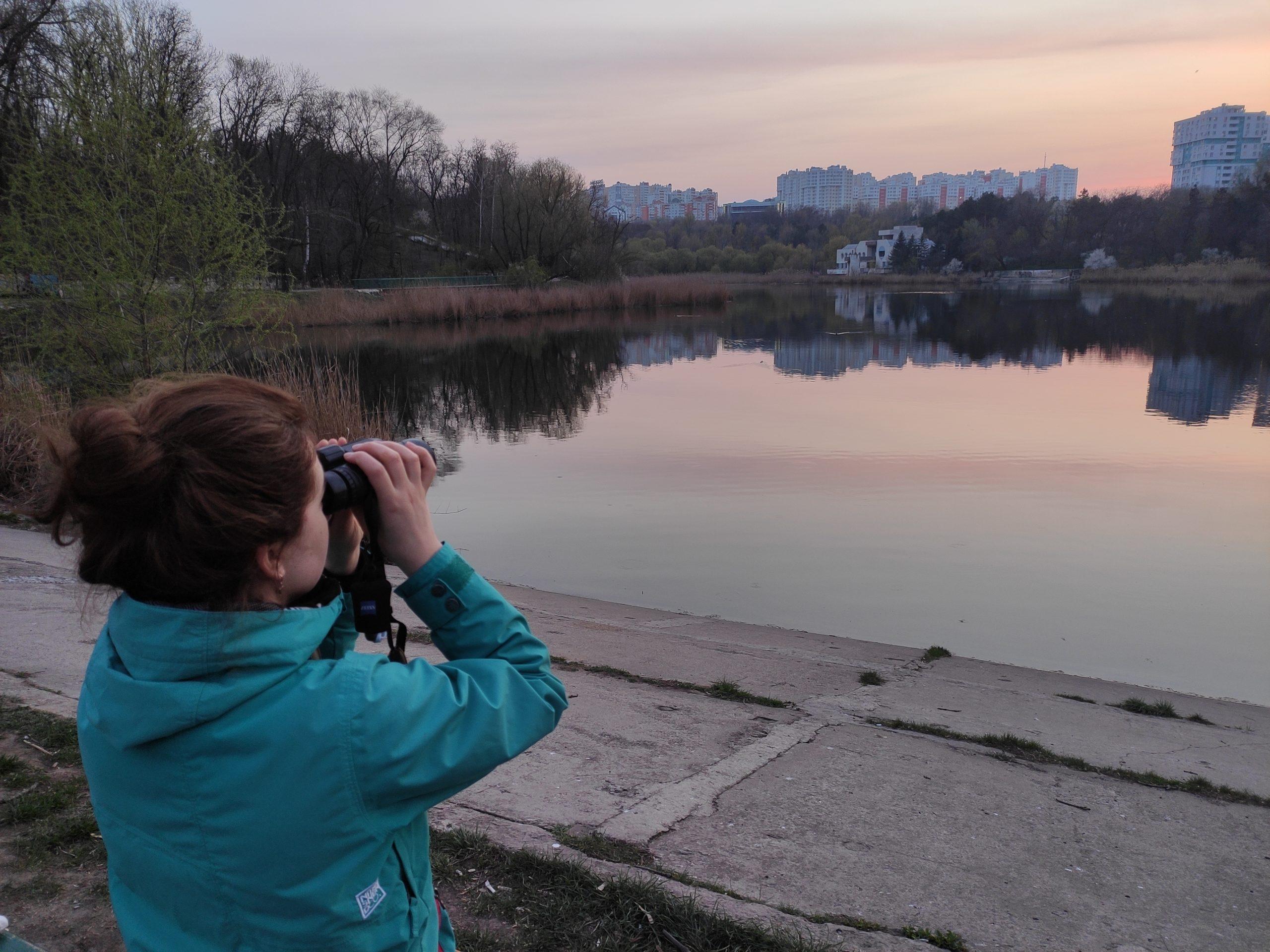 Birdwatching de acasă