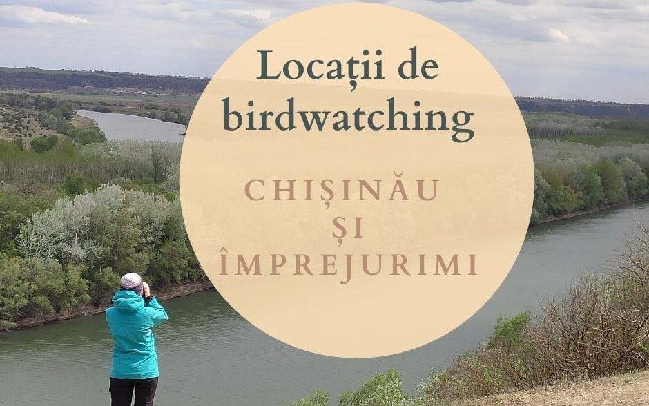 Locații de birdwatching în Chișinău și împrejurimi