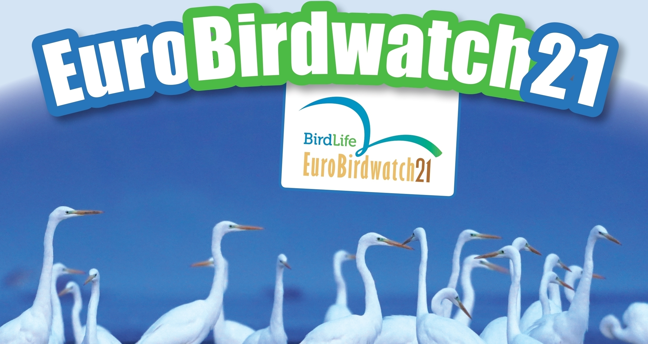 EuroBirdwatch 2021 în Republica Moldova